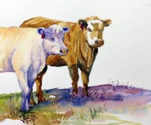 Julie's cows