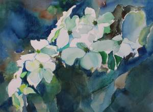 72B, Dogwood Bough, watercolor, 19x22