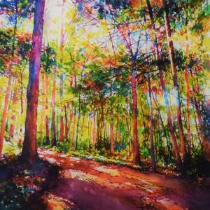 Sunny Path (2)